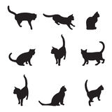 Cats. Cat silhouettes set. Additional format Eps8 (very easy editable separate layers Royalty Free Stock Photos