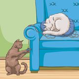 Cats in armchair, cute pet animal playing and resting vector Illustration royalty free stock photos