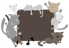 Cats around the frame Royalty Free Stock Photography