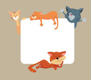 Cats around the frame Royalty Free Stock Photo