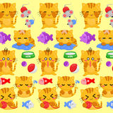 Cats background Royalty Free Stock Photography