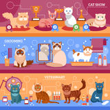 Cats banner set Stock Photo