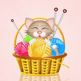 Cats in the basket of balls Stock Image