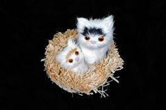 Cats in basket ornament. Stock Photo