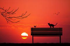 Cats and bird on bench at sunset Royalty Free Stock Photo