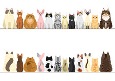 Cats border set. Front view and rear view Stock Photos