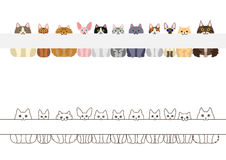 Cats border set, with long blank board Stock Images
