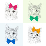 Cats with a bows. Seamless pattern. Color set. Realistic graphic illustration.  Royalty Free Stock Photos