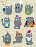 Cats Celebrating Holidays Royalty Free Stock Photography