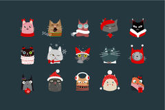 Cats with Christmas paraphernalia Stock Images