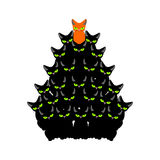 Cats Christmas tree. Spruce of pet. fir-tree from cat. New Year Royalty Free Stock Image