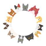 Cats circle Royalty Free Stock Photography
