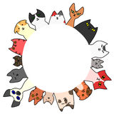 Cats circle with copy space Royalty Free Stock Photography