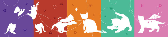 Cats collection with colorful background Royalty Free Stock Images