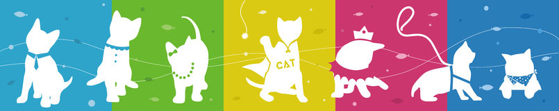 Cats collection with colorful background Stock Photo