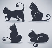 Cats collection Royalty Free Stock Photography