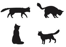 Cats collection - vector silhouette. Stock Image