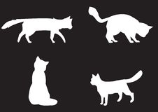 Cats collection - vector silhouette Stock Photography