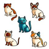 Cats color hand drawn illustrations set vector illustration