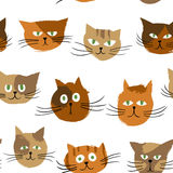 Cats_color_pattern 免版税库存照片