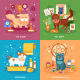 Cats concept set Royalty Free Stock Image
