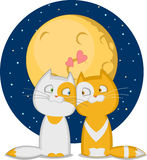 Cats. A couple in love under the moon . Vector illustration Royalty Free Stock Image