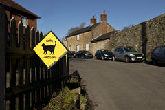 Cats crossing road sign. In the United Kingdom Stock Photography