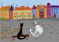 Cats' date in the town. Cartoon