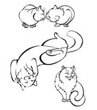 Cats in different poses. Vector illustration Royalty Free Stock Image