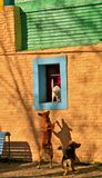 Cats and dogs. Playing in La Boca neighbourhood, Buenos Aires Royalty Free Stock Images