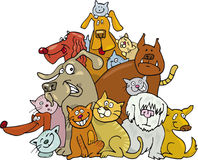 Cats and dogs. Huge group of cats and dogs