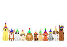 Cats and dogs border set. With colorful party hat Royalty Free Stock Images