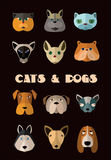 Cats and dogs icon set. Vector format. Stock Photography