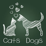 Cats Dogs Love Shows Compassion Puppy And Kitty Stock Photos