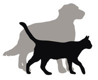 Cats and dogs, vector illustrations. Vector illustrations of domestic cats and dogs Stock Photo