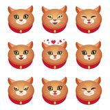 Cats emotions set Royalty Free Stock Image