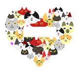 Cats  face in heart-shape Royalty Free Stock Photos