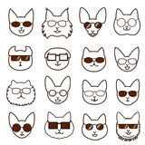 Cats faces with glasses set Royalty Free Stock Photo