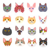 Cats faces set Stock Photo
