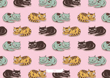 Cats family pattern Stock Photography