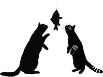Cats and fish animals isolated Royalty Free Stock Photo