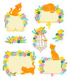 Cats and flowers. Collection of labels and decorations with flowers and cats Royalty Free Stock Photos