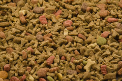 Cats food Stock Images
