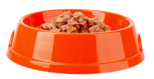 Cats food isolated Stock Photos