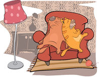 Cats friends sleep on a sofa Royalty Free Stock Images