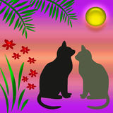 Cats in the garden. Cats and flowers in a moon light garden Royalty Free Stock Image
