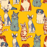 Cats group color seamless pattern Royalty Free Stock Image