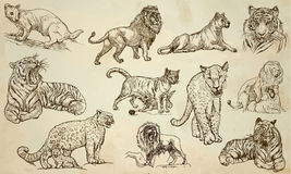 CATS - An hand drawn vector pack, line art Royalty Free Stock Photography