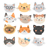 Cats heads vector illustration cute animal funny decorative characters feline domestic trendy pet drawn Stock Photos