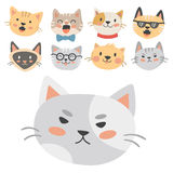 Cats heads vector illustration cute animal funny decorative characters feline domestic trendy pet drawn Stock Photography